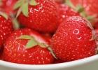 strawberries-278552_640